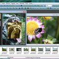 Скриншот 1 программы PhotoFiltre