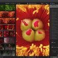 Скриншот 1 программы Final Cut Pro X