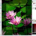 Скриншот 1 программы GIMP