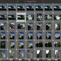 Скриншот 1 программы Darktable
