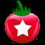 Иконка программы TeamViz Lite