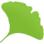 Иконка программы Gingko