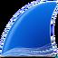 Иконка программы Wireshark