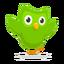 Иконка программы Duolingo