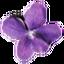 Иконка программы Violet UML Editor