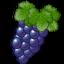 Иконка программы Vineyard