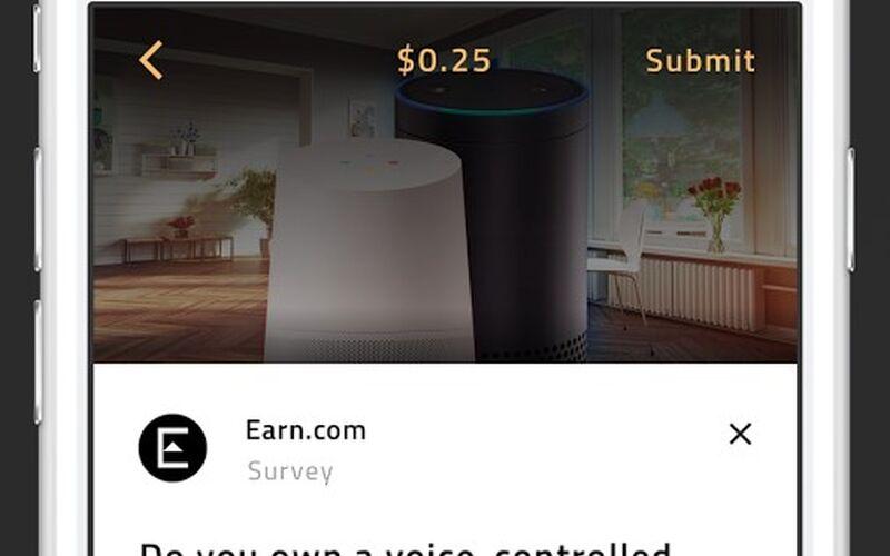 Скриншот 1 программы Earn.com
