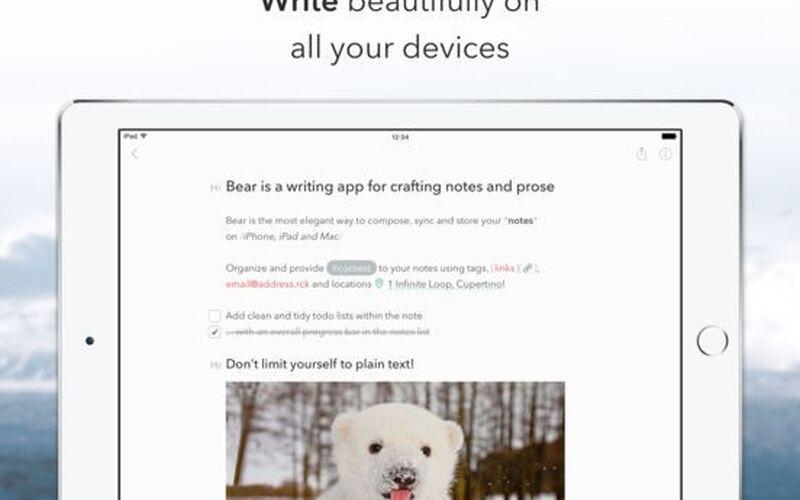 Скриншот 1 программы Bear