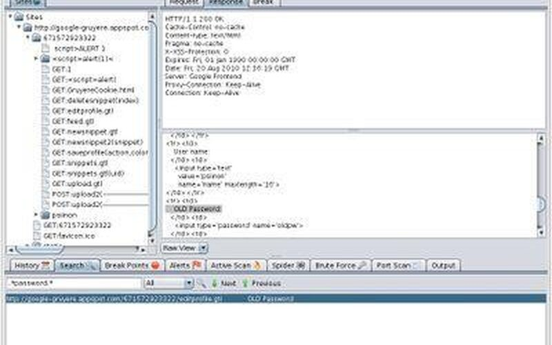 Скриншот 1 программы Zed Attack Proxy