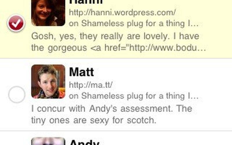 Скриншот 1 программы WordPress