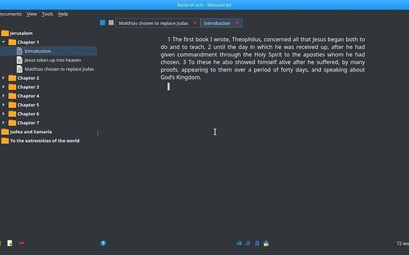 Скриншот 1 программы Manuskript