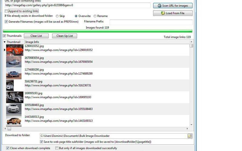 Скриншот 1 программы Bulk Image Downloader