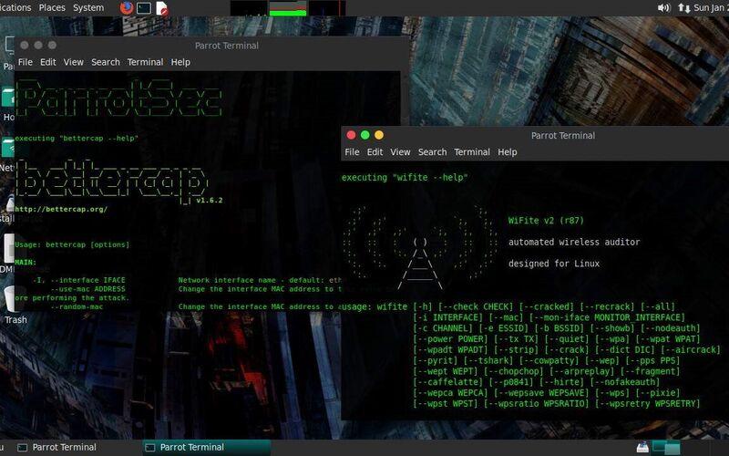 Скриншот 1 программы Parrot Security OS