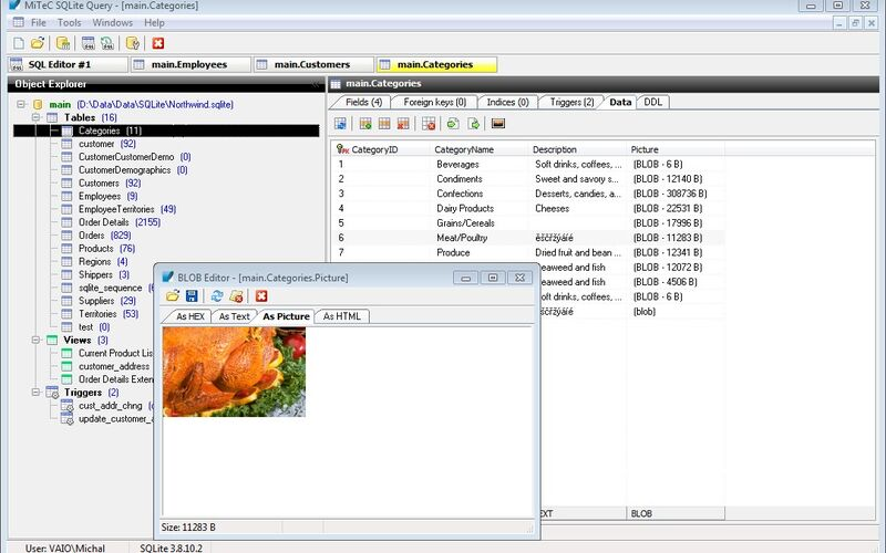 Скриншот 1 программы SQLite Query