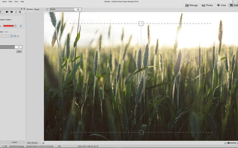 Скриншот 1 программы ACDSee Photo Studio