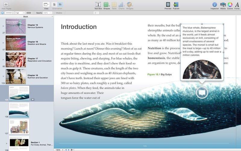 Скриншот 1 программы iBooks Author
