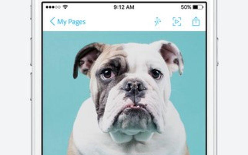 Скриншот 1 программы Adobe Spark Page