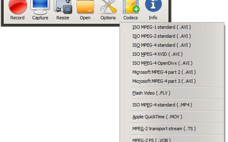 Скриншот 1 программы oCam