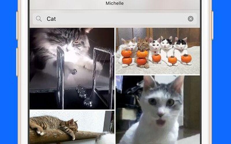 Скриншот 1 программы Gfycat