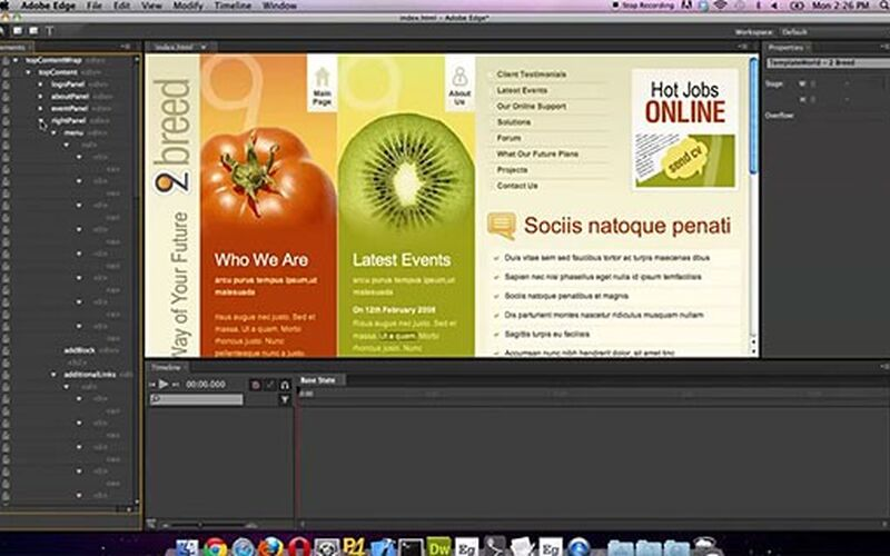 Скриншот 1 программы Adobe Edge Animate