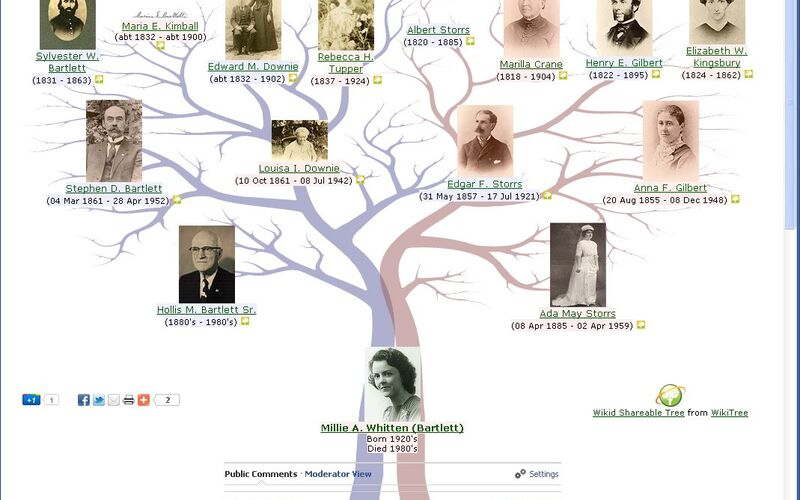 Скриншот 1 программы WikiTree.com