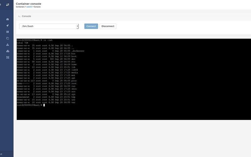 Скриншот 1 программы Portainer