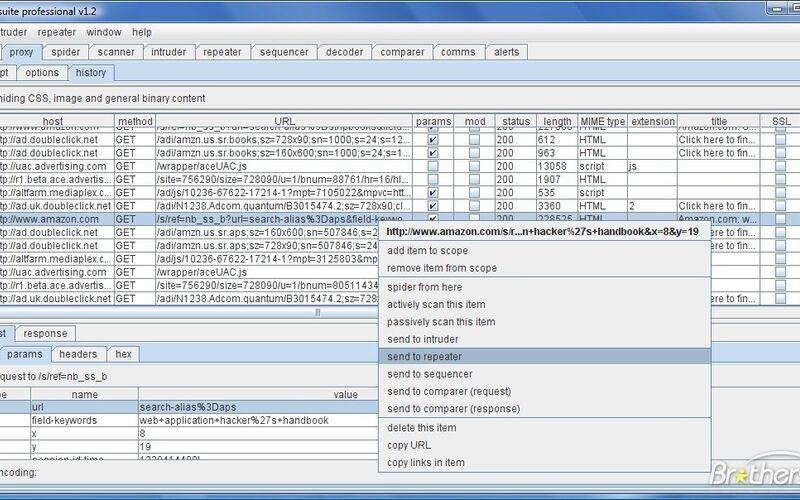 Скриншот 1 программы Burp Suite