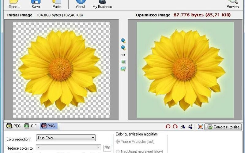 Скриншот 1 программы RIOT - Radical Image Optimization Tool