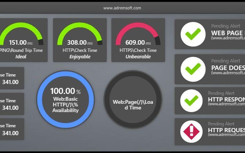 Скриншот 1 программы NetCrunch