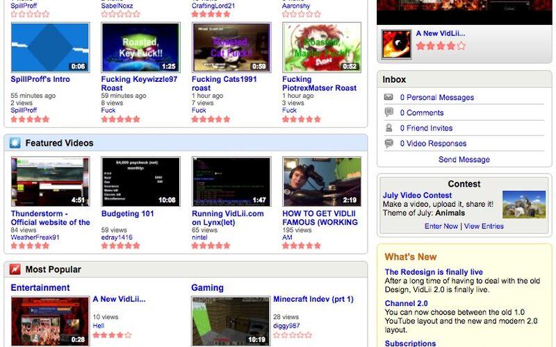 Скриншот 1 программы VidLii