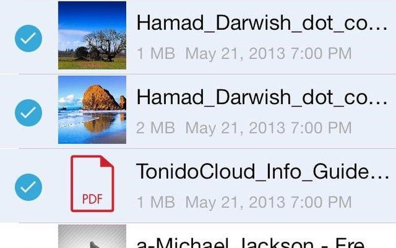 Скриншот 1 программы FileCloud