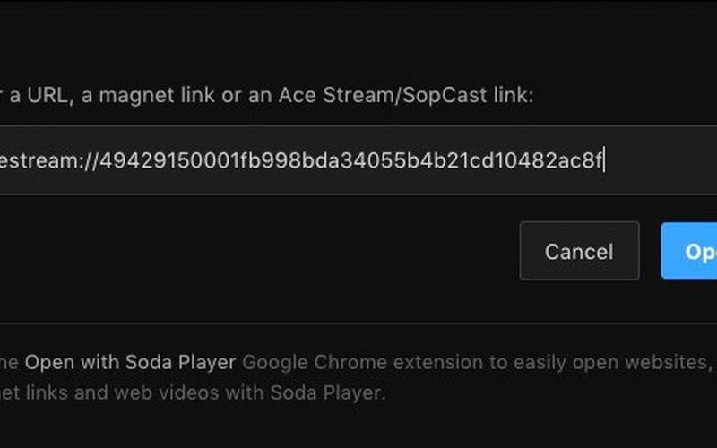 Скриншот 1 программы soda player