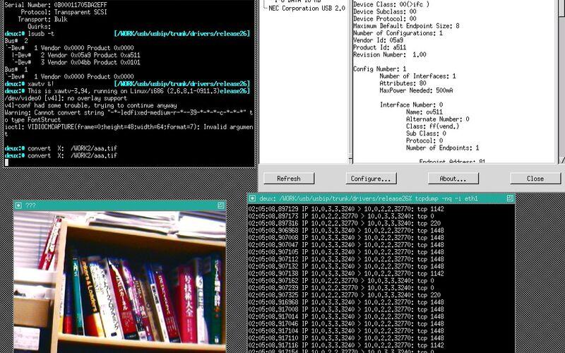 Скриншот 1 программы USB/IP