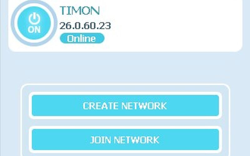 Скриншот 1 программы Radmin VPN