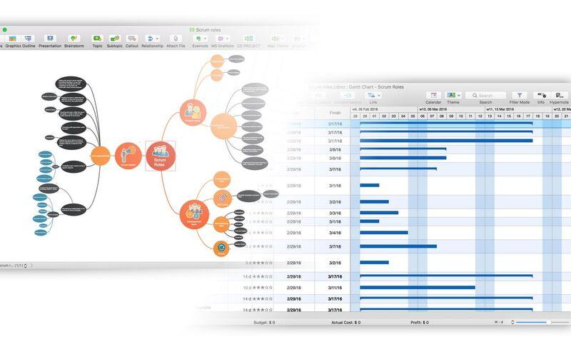 Скриншот 1 программы ConceptDraw MindMap
