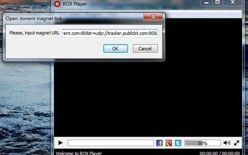 Скриншот 1 программы ROX Player
