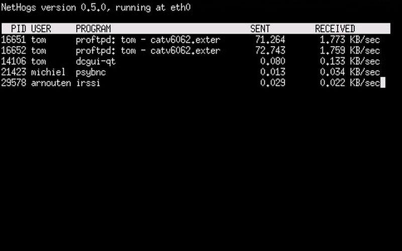 Скриншот 1 программы Nethogs