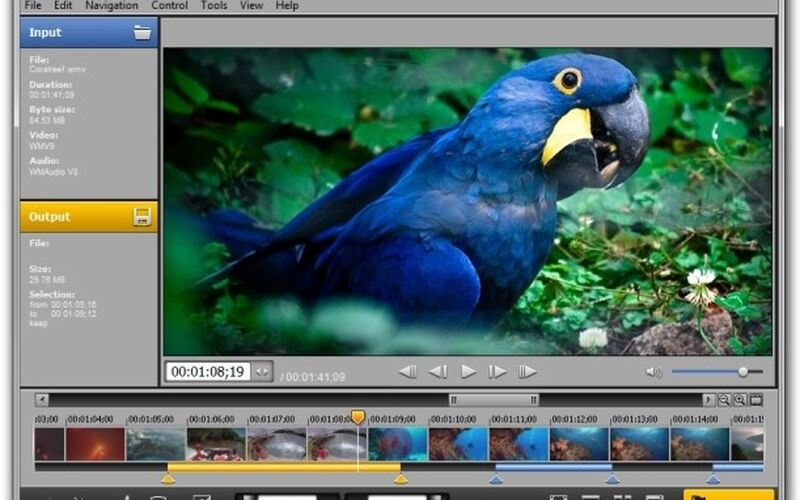 Скриншот 1 программы SolveigMM Video Splitter